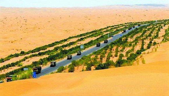 沙漠种树 感动中国