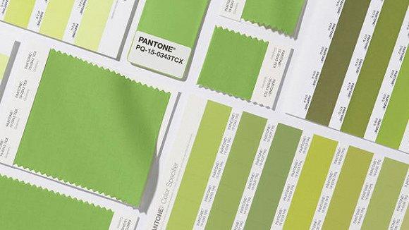 草木绿-在小米爱上 初音绿 之后 华为也要推出小清新的绿色手机