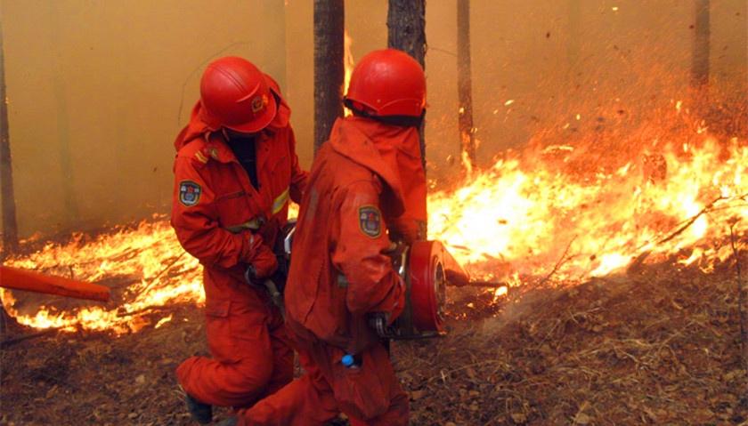 北京延庆森林火灾