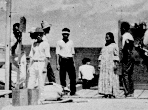 美傳奇女飛行員80年前命喪太平洋 遺骸終獲確認