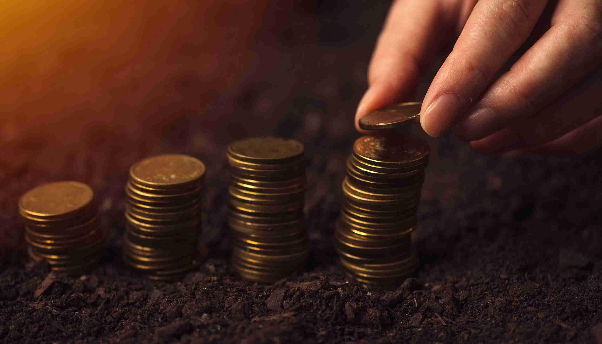 经济参考报:国地税合并提速 改革时间表已明确