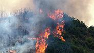 一周声音 应急管理部:?#32929;?#26862;林火灾30名牺牲人员被批准为烈士