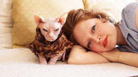 女人與貓:沙發留給前男友,貓留給我