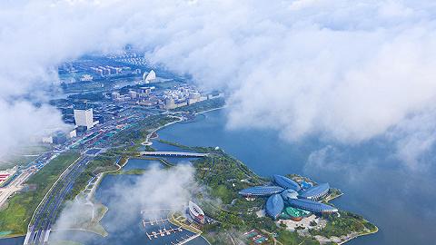 【特寫】企業從世界來,到上海臨港去!