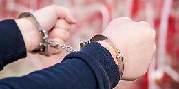 越南乂安省抓获8名组织人员非法偷渡英国的犯罪嫌疑人