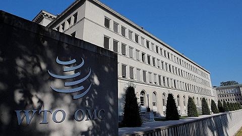WTO改革,发达国家与发展中国家的主要分歧在哪里?