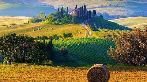 在农耕领域寻找未来?疫情使越来越多意大利人下田