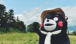 """比起韩国旅游代言大使""""都教授""""  这只叫熊本的熊一点也不逊色"""