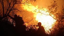 云南玉溪森林火灾已烧至昆明境内  当地已调派十四集团军参与灭火
