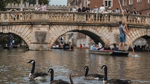 【天下奇聞】再別康橋?英國劍橋擬出招限制中國游客數量