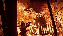 加州山火困局难解:福山为什么说美国林务局是政治衰败的典型案例?