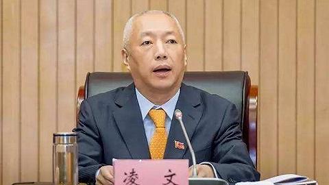 国家能源集团总经理凌文调任山东