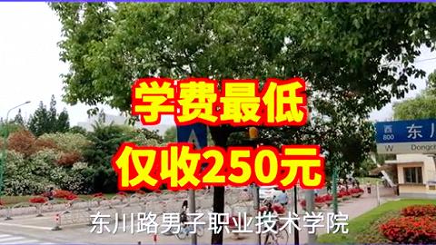 看完上海交大的这条招生广告,学生你们来不来?