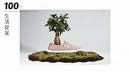 "Allbirds说,光脚穿一双用""羊毛、树和糖""做的鞋怎么样?  100个生活提案"