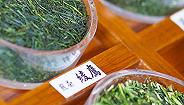 可口可乐在中国开卖日本绫鹰绿茶,价格有点高