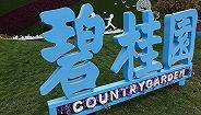 """连续三年入围世界500强,碧桂园排名增幅居首成""""黑马"""""""
