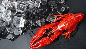 """小龙虾、大闸蟹、酸菜鱼……你吃的爆品美味背后有一所神秘的""""研究中心"""""""