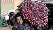 【特写】一支七夕玫瑰和四个男人:云南斗南的鲜花生意如何运转?