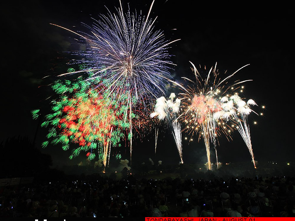 2011年8月1日,日本大阪,人们在完美自由焰火艺术表演活动上观赏烟花