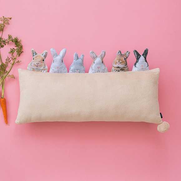 """为兔子爱好者推出的兔子枕头,以及""""逃跑的萝卜""""抱枕"""