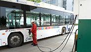 """新能源客车7月销量大涨,补贴过渡期内""""抢装""""是主因"""