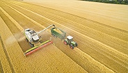 上半年农民收入增6.6%,农业农村经济稳中向好