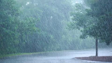 """臺風""""玲玲""""將影響東北,局地有暴雨或大暴雨"""