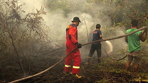 印尼森林大火毒雾达危险水平约200人被捕,99%火灾源自人为因素