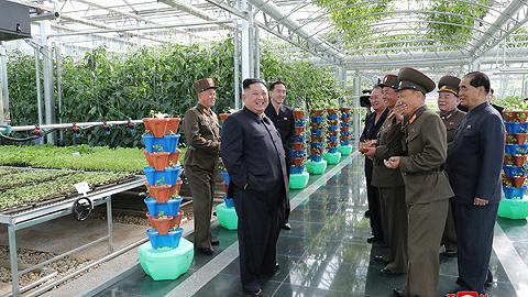 金正恩視察部隊農場:解決吃飯問題要有決定性轉變
