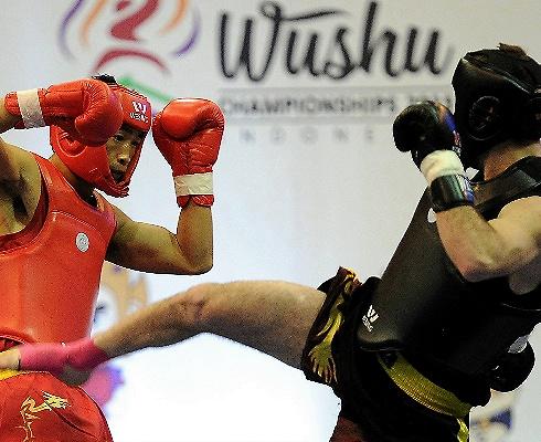 武術世錦賽即將上海揭幕:參賽人數創新高,首次引入市場化機制