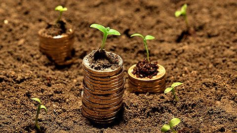 科创主题基金不爱科创板,集体选择低仓位持股有何隐衷?