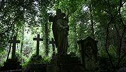 万圣节书单:十本关于墓地的书