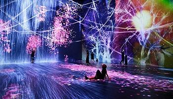 """从teamLab上海新馆开幕谈起:我们该如何理解""""网红展""""?"""