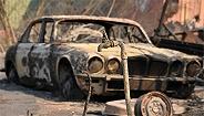 """悉尼首发最高等级""""灾难性""""火警,澳大利亚进入""""史上山火最危险一周"""""""