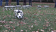 【工业之美】机器人足球队来了,麻省理工这九只猎豹机器人能传球也能抢球