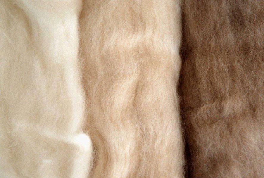 央视调查羊绒主产地:价格降了30%!天冷了,保暖品为啥凉了?图2