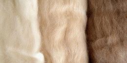 央视调查羊绒主产地:价格降了30%!天冷了,保暖品为啥凉了?