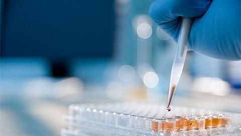 北京确认接诊鼠疫病例,什么是鼠疫?