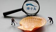 獐子岛无法统计打捞扇贝总重量,全年亏损或超2亿元