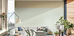 为什么有40%的年轻人在外穿得很冷淡,却把家里的墙偷偷刷成彩色?