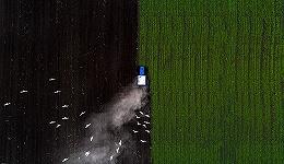 """""""两化""""农业业务合并,新农化巨头先正达集团诞生"""