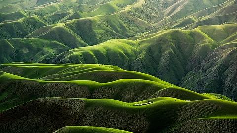 我們有多依賴大自然?近一半全球經濟產值來自這里