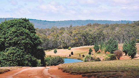 澳大利亚:将拨款7600万澳元重振旅游业