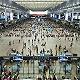 旅游公司及航空公司公布疫情應急預案,及最新退改政策