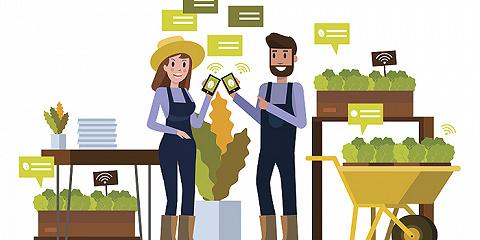 現如今,你選擇哪家生鮮平臺買菜?