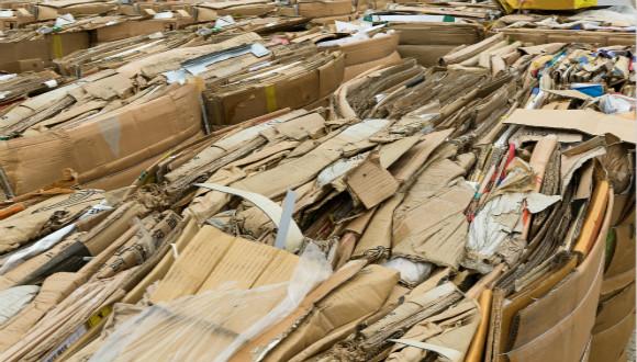 废纸价格已连续多次上调,最高每吨上调150元
