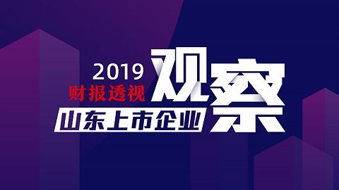 山东上市企业观察·2019财报透视