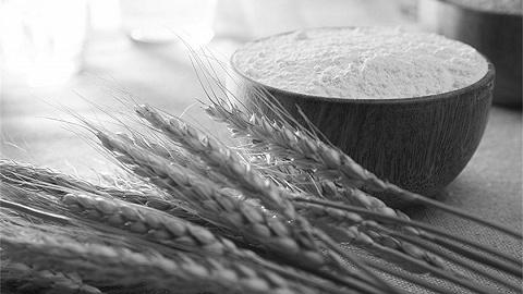农业农村部:没必要抢购囤积粮食,国际粮价上涨对国内影响有限