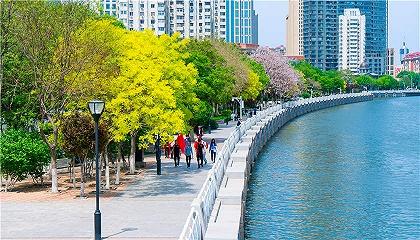 天津滨海新区发布2020年精品旅游线路