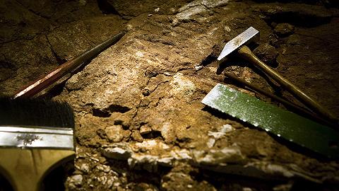 考古新发现:4000年前的活人殉葬墓